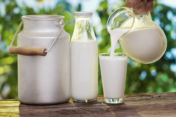 Sữa Dj&a nguyên kem hàm lượng Canxi cao